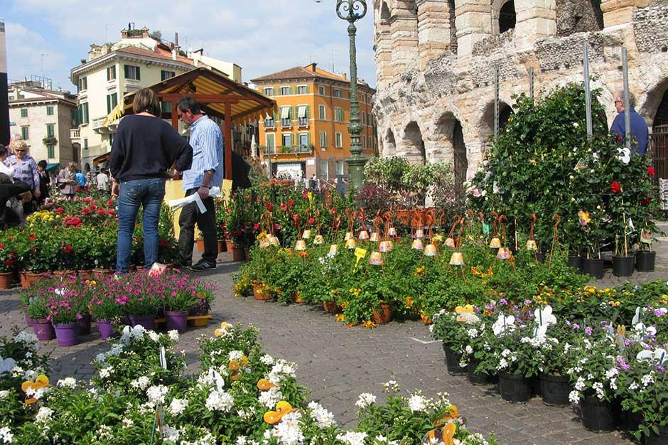 Verona-ecologia