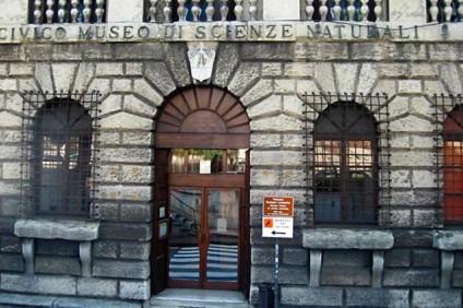 Museo-di-Storia-Naturale-(Verona)