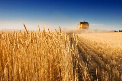 Fondi per l'agricoltura