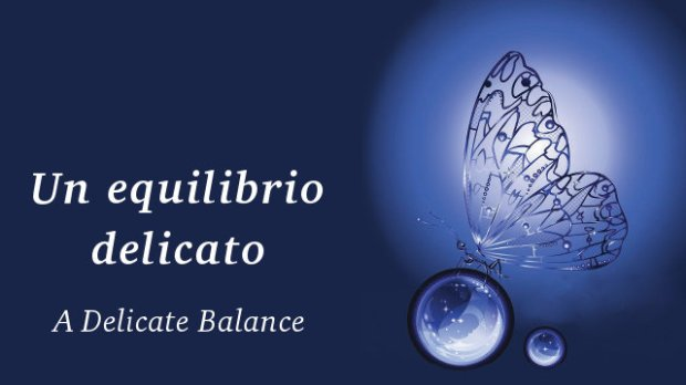 equilibrio-delicato