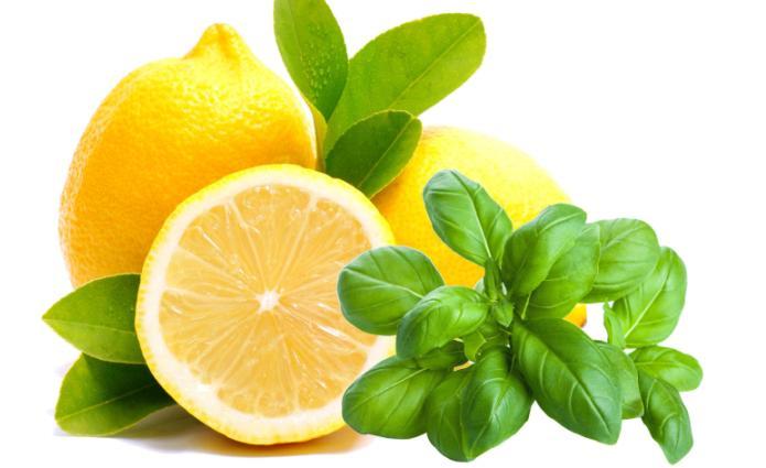 Basilico e limone nd