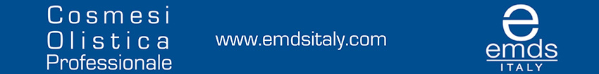 Le dernier conseil municipal (25/05/2020) - Championnat d'Europe de Football 2020