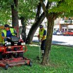 Il verde della città: un bene da progettare, valorizzare e gestire