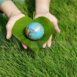 Parte il Progetto Ease, attività ecosostenibili per le scuole