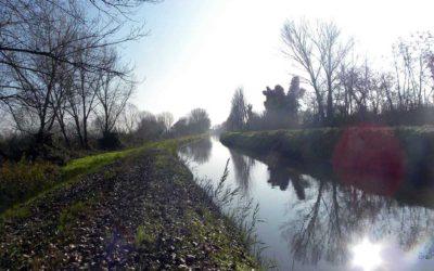 Il fiume Tartaro e a sinistra la palude della Pellegrina