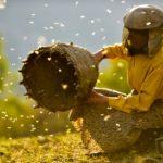 Film Festival della Lessinia chiama pianeta Terra