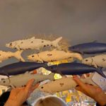 Le Sardine chiedono maggiore attenzione nei confronti dei giovani