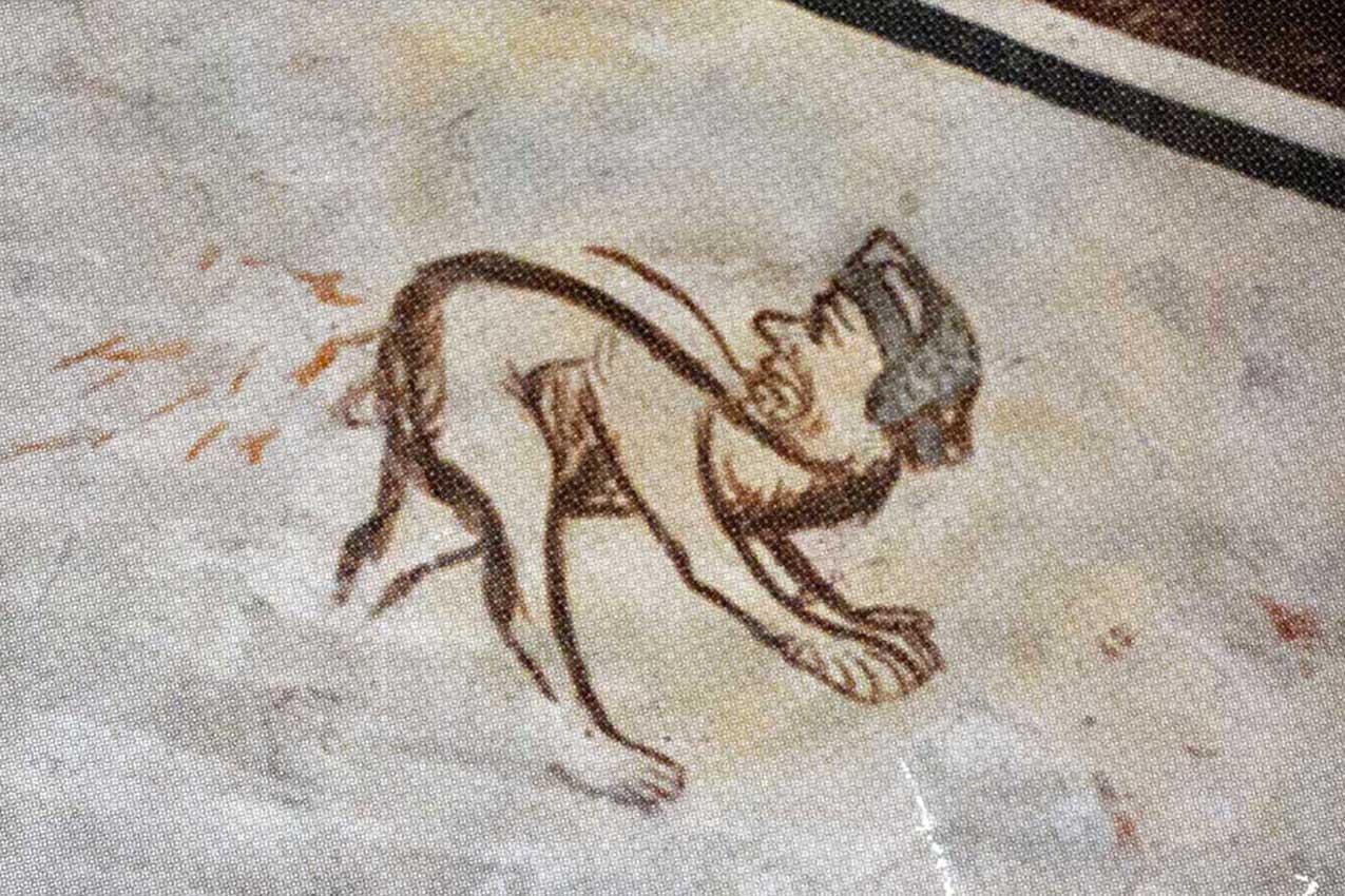 Il disegno scoperto sul transetto di Sant'Anastasia nei restauri del 2011