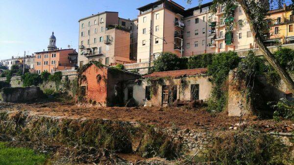 Disboscamento al Giarol Grande (Verona) in vista dell'apertura dei cantieri TAV prevista per marzo 2022