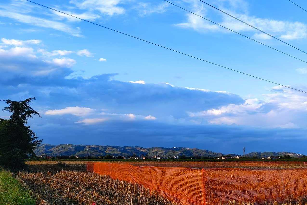 Terreni espropriati per la realizzazione del viadotto TAV di San Bonifacio (foto M. Marcolungo)